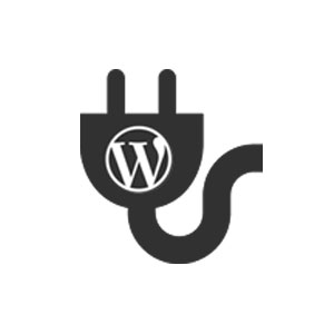 Extensão WordPress Checker