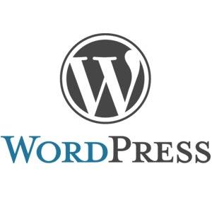 3be9b259516bec 15 marcas famosas que usam WordPress