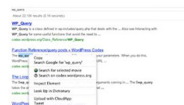 wordpress-org-search.jpg